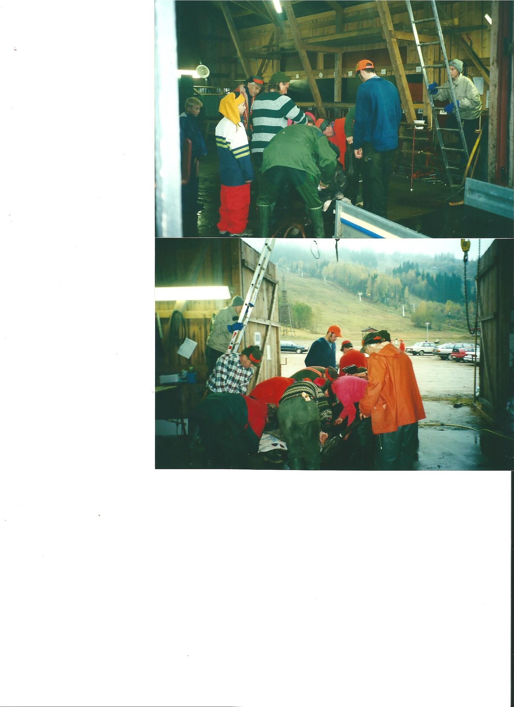 jaktkort-2003-vvo-002